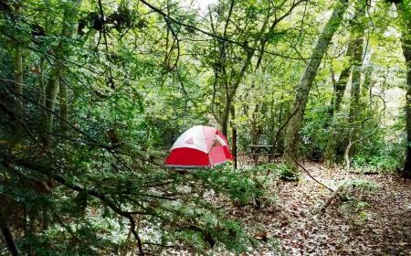 Riverside Campsite - Ohiopyle